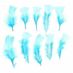 Набор перьев для декора 10 шт., размер 1 шт: 10 ? 4 см, цвет голубой