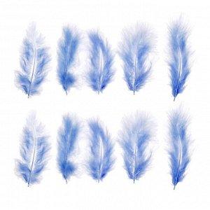 Набор перьев для декора 10 шт., размер 1 шт: 10 ? 2 см, цвет голубой
