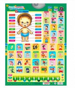 Детский говорящий и обучающий плакат