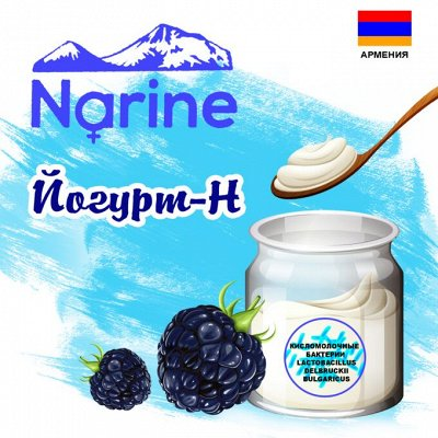 ⚡ Заквасок ДОМ - вкусно, полезно, доступно и просто — Narine — Йогурты и десерты