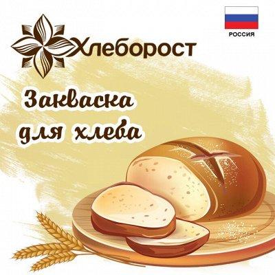 ⚡ Заквасок ДОМ - вкусно,полезно, доступно и просто! — Хлеборост. Новинки! — Хлеб и выпечка