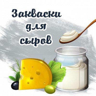 ⚡ Заквасок ДОМ - вкусно,полезно, доступно и просто! — Сыроделие — Сыры