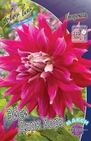 Подари себе ПРАЗДНИК! Экспресс- сбор!Пакетированные — Георгины — Семена цветов