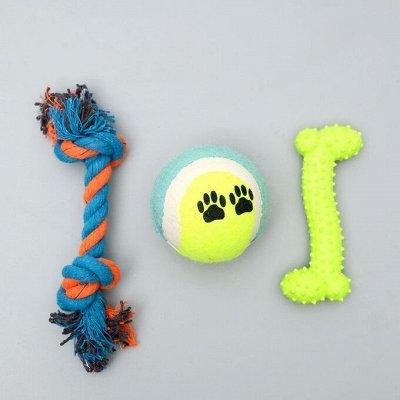 Пижон — для собак и кошек — Игрушки из термопластичной резины