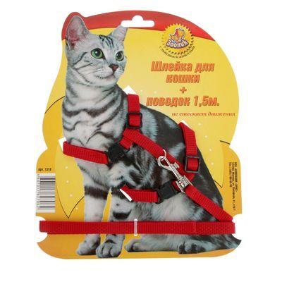 Товары для Любимцев. Уход, Содержание, Игрушки, Лакомства  — Амуниция для кошек — Аксессуары