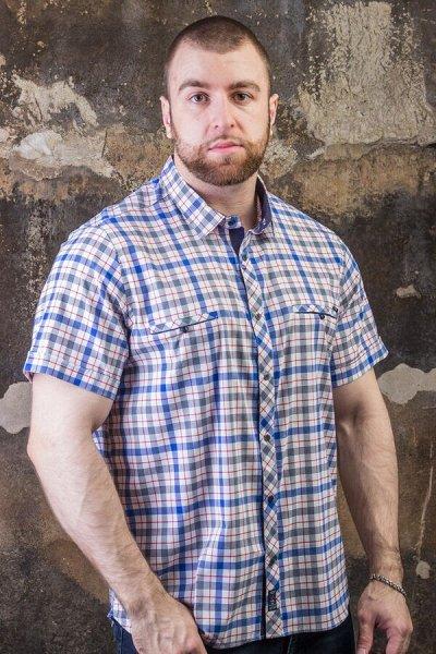TAMKO. Турция до 6XL! Новинки футболок лето 2021 🔥 — Рубашки мужские — Длинный рукав