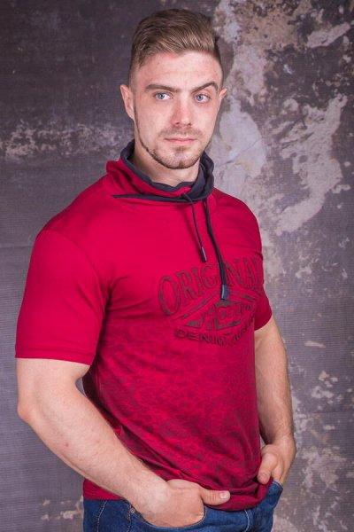 TAMKO-мужская одежда из Турции 16. Много больших размеров. — Футболки 2 — Футболки