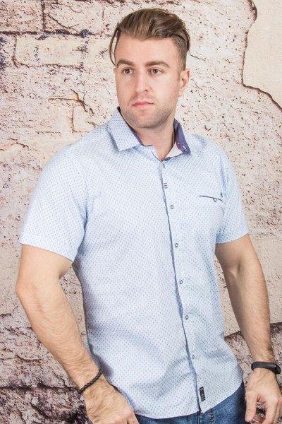 TAMKO-мужская одежда из Турции 19. Много больших размеров — Рубашки короткий рукав — Короткий рукав