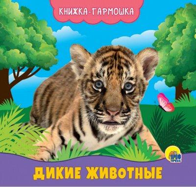 Кот-сказочник-26! Читаем, играем, развиваемся! — КНИЖКА-ГАРМОШКА — Детская литература