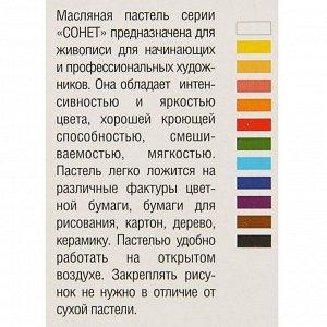 Пастель масляная «Сонет», 12 цветов, 9/59 мм, круглая