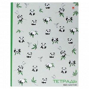 Тетрадь на кольцах, 160 листов в клетку «Панды», твёрдая обложка, глянцевая ламинация, со сменным блоком