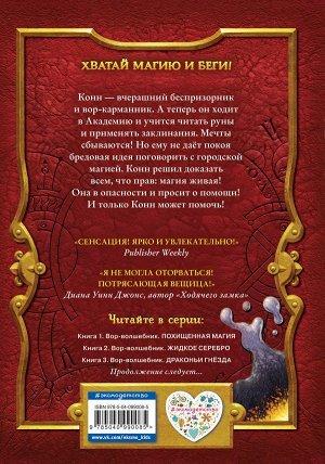 Прайнис С. Вор-волшебник. Жидкое серебро (#2)
