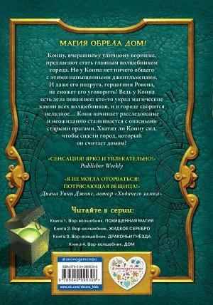Прайнис С. Вор-волшебник. Дом (#4)