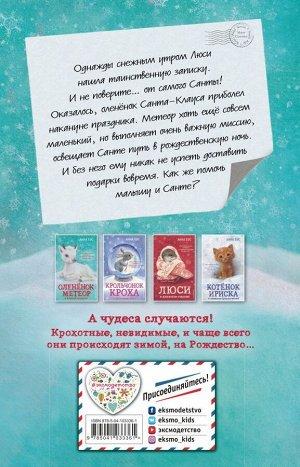Бус А. Оленёнок Метеор и зимний сюрприз! (#1)