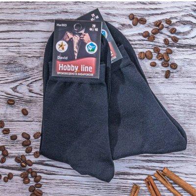 Hobby Line - носки для всей семьи! Яркие, классика — Носки мужские хлопковые — Носки