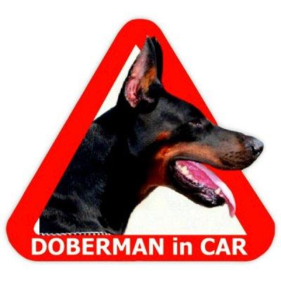 🌟Яркие интерьерные наклейки! Наклейки на Авто! - 46🌟 — Собаки — Аксессуары