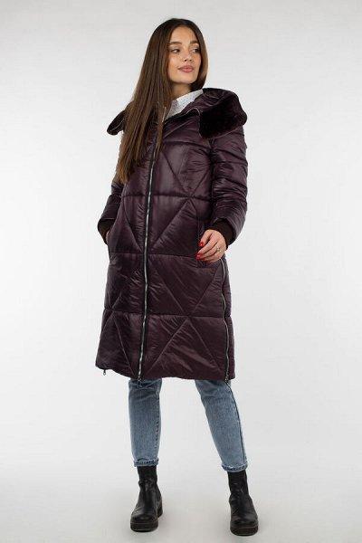 Империя пальто-19, пальто, куртки, плащи — Куртки зимние — Пуховики