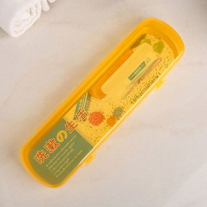 Футляр для зубной щётки и пасты, 21 см, цвет МИКС
