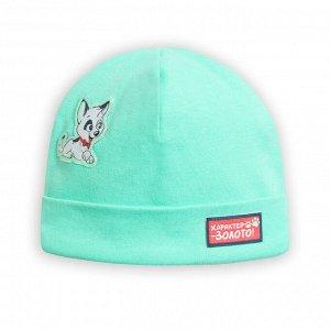 BFQ1169 шапка для мальчиков