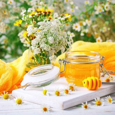 Огромный выбор товаров в наличии! Много сладенького!  — Мёд, живица, умные сладости, огнёвка! — Кухня