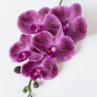Искусственные растения. ЕвроКачество! Гипоаллергенны — Одиночные цветы