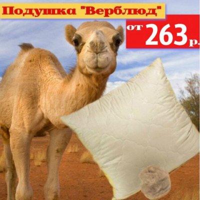 """💖 Эко-подушки для хорошего сна ♡ уДачный сезон! — Подушка """"Верблюд"""" — Подушки и чехлы для подушек"""