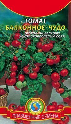 Томат Балконное Чудо ЦВ/П (ПЛАЗМА) раннеспелый до 30-40 см