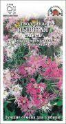Цветы Гвоздика Пышная Смесь ЦВ/П (Сотка) 0,2гр многолетнее 30-40см