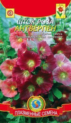 Цветы Шток-роза (Мальва) Антверпен смесь ЦВ/П (ПЛАЗМА) (длительное цветение)