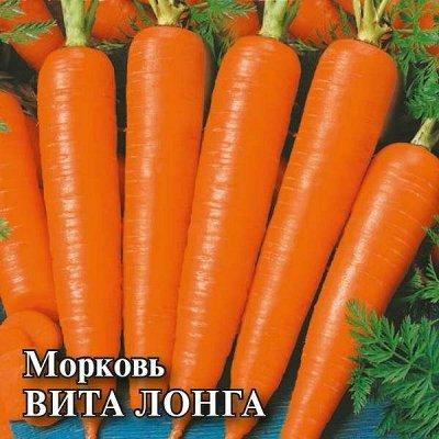 Семена «ГАВРИШ» Пачки Биг Сайз, газон, сидераты — СЕМЕНА ОВОЩЕЙ ДЛЯ ФЕРМЕРОВ — Семена овощей