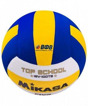 Мяч волейбольный Mikasa ISV 100TS 1/36