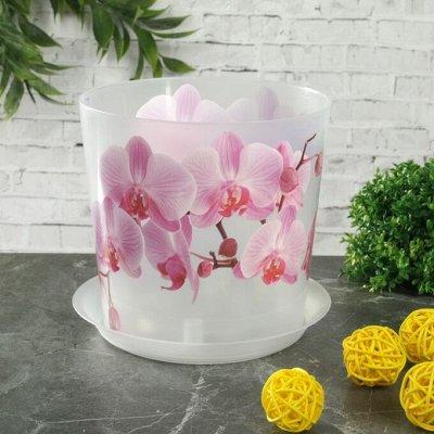 🌷 Кашпо, горшки, грунт - всё для домашних цветов и сада 🌷 — Кашпо для орхидей — Кашпо и горшки