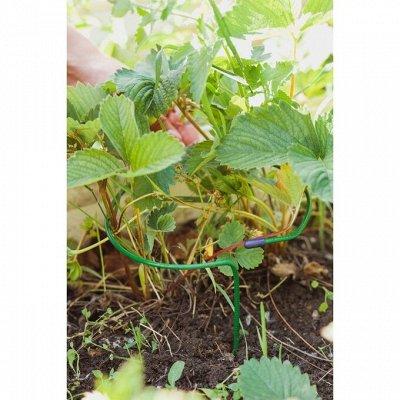 Лучший огород-дача. Подвязки, освещение, парники, удобрения — Кустодержатели