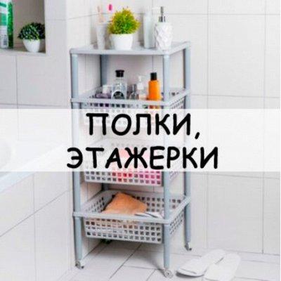 Хозтовары из Алтая — Полки, этажерки — Прихожая и гардероб
