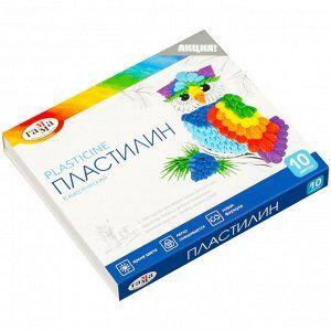 """Пластилин Гамма """"Классический"""", 10 цветов, 200г, со стеком, картон. упак."""