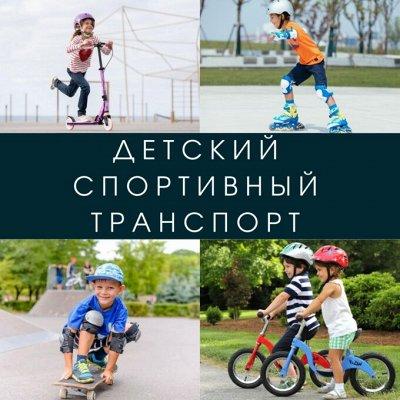 💫ГердаВлад! Товары для безопасности, гигиены и развития  — Детский спортивный транспорт — Транспорт