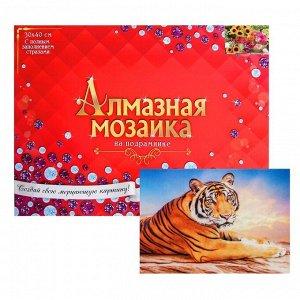 Алмазная мозаика с полным заполнением, 30 ? 40 см «Тигр на закате»