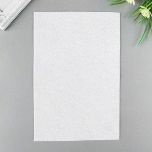 """Фетр """"BLITZ"""" 1 мм, мягкий 20х30 см ± 2 см (набор 5 шт) белый"""