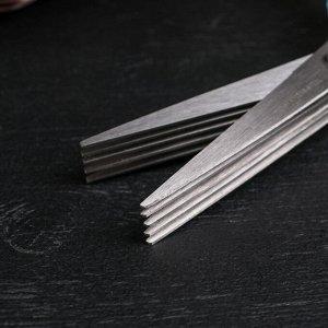 Ножницы кухонные для зелени Доляна «Шеф», 21 см, цвет МИКС