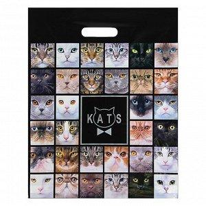 """Пакет ПВД с вырубной ручкой """"Котики"""""""