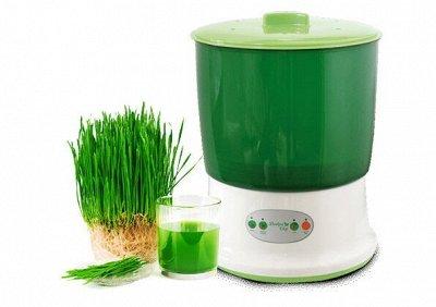 • Сибирские органические продукты • Новые супердобавки•    — Проращиватели — Пищевые добавки