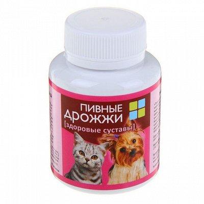 Пижон - для собак - 21 — Витамины и добавки для собак — Аксессуары и одежда