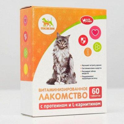 Зоотовары. Все для любимых питомцев — Зоотовары. Товары для кошек. Полезные лакомства для кошек. — Для животных
