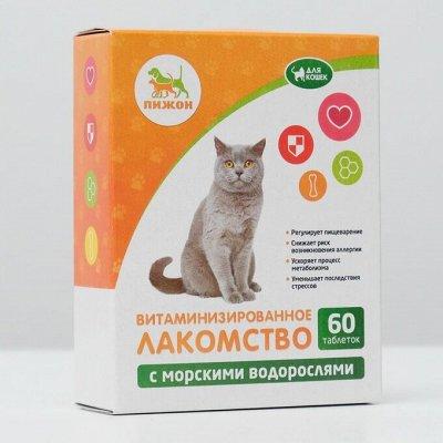 Пижон — для кошек — Лакомства — Аксессуары
