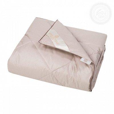 Твой сладкий сон с Арт*постелькой!  — Одеяла — Одеяла