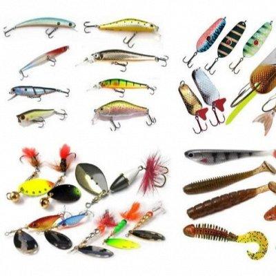 Рыбалка, Масла MOTUL, Химия для Моря - 7 — Приманки — Все для рыбалки