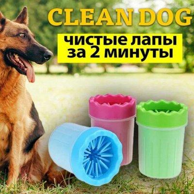 Karmy - корм для собак и кошек премиум класса! №24 — Лапомойка, раз-два-три и чистые лапы — Уход