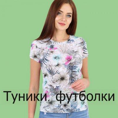 Ивановский трикотаж Барболета-19, новинки — Туники, футболки, майки, кофты. — Одежда