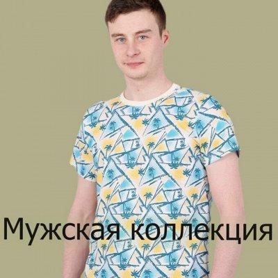 Ивановский трикотаж Барболета-29, новинки — Мужская коллекция — Одежда