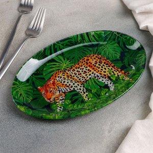 Блюдо овальное Доляна «Шерхан», 24,5?15 см
